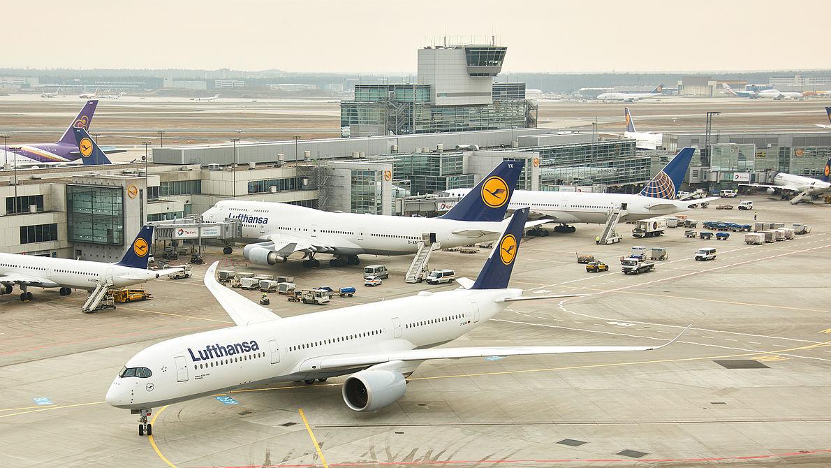 "Software ""Malfunction"" Grounds More Than 46 Lufthansa Flights: Over 4,600 Passenger Affected"