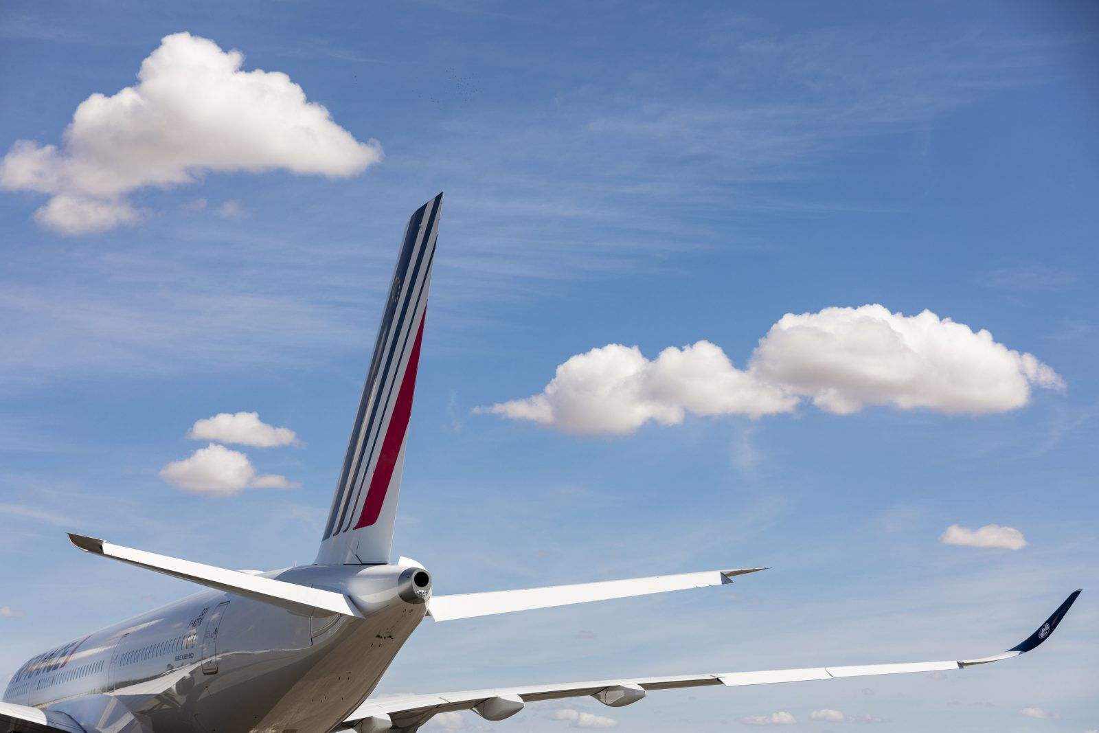 Air France to Carbon Offset All Domestic Flights and Cut CO2 Emissions in Half Within 10 Years